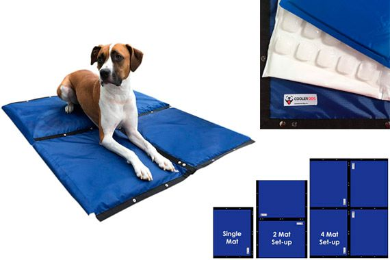 Cooler Dog Turbo Cooling Mat: photo