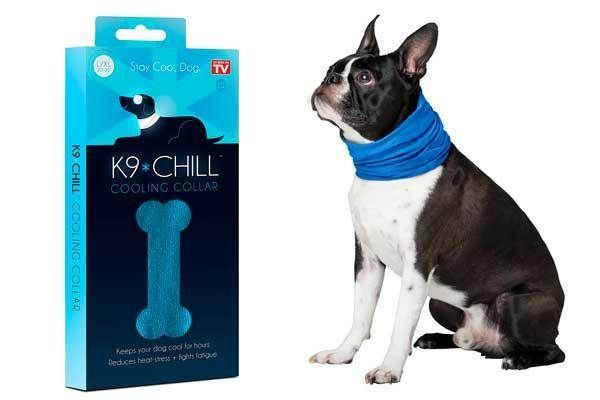K9 Chill Dog Cooling Collar: photo