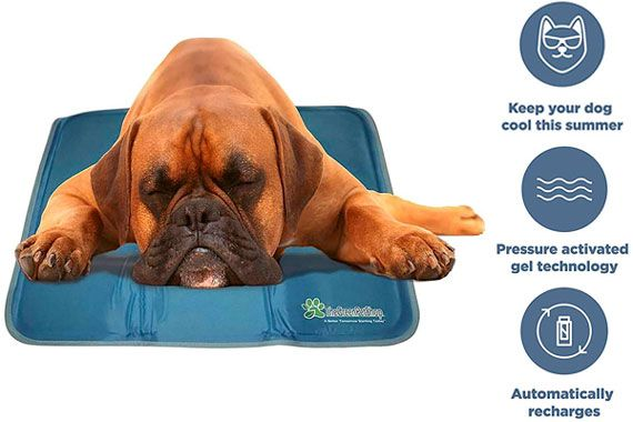 The Green Pet Shop Dog Cooling Pad: photo