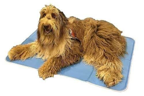 The Green Pet Shop Self Cooling Pad