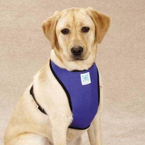 Guardian Gear Cool Pup Dog Cooling Harness