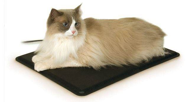 a safe cat heading pad