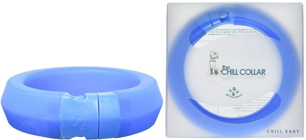 All Four Paws 6-Inch Chill Pet Collar: photo