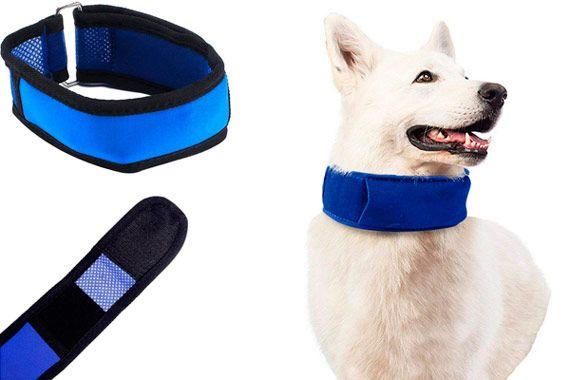 EraseSIZE Summer Pet Dog Cooling Collar: photo
