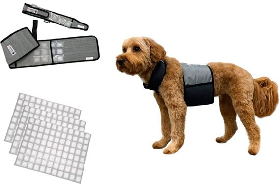 CoolerDog Cooling Vest with FlexiFreeze Ice Sheets: photo
