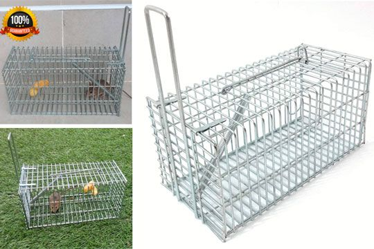 Trap-Top One-Door Small Animal Pest Control: photo