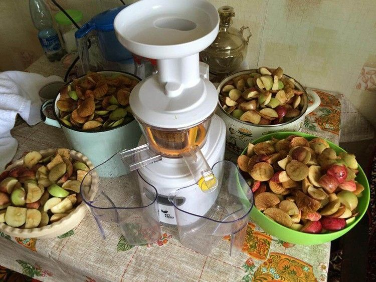 Соковыжималка для твёрдых овощей и фруктов 13: фото