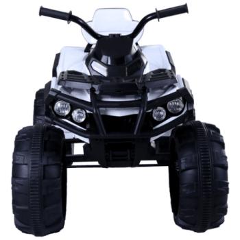 Квадроцикл Grizzly ATV BDM0906: фото