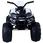 Grizzly ATV BDM0906 min: фото