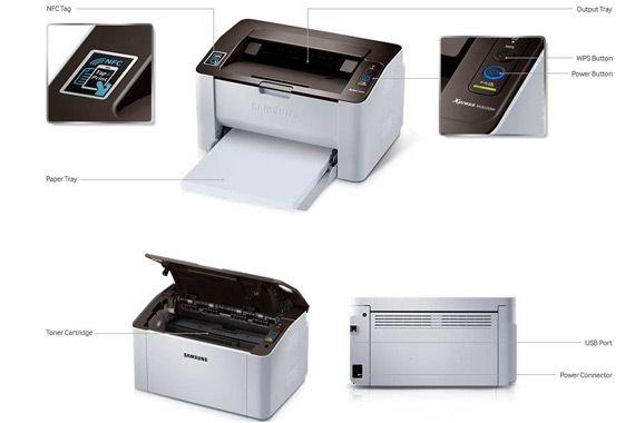 Принтер Samsung Xpress M2020W: фото