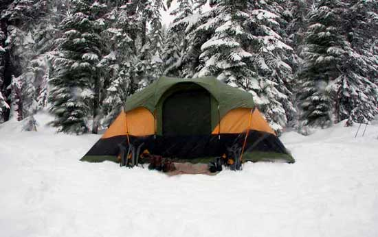 how to pick a tent heater: photo