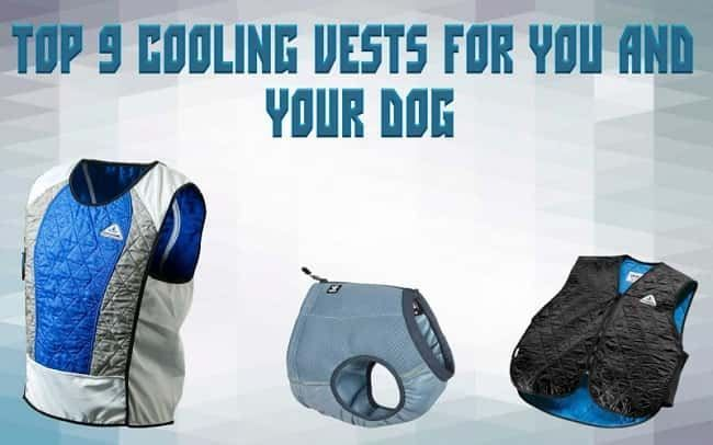 Top 9 cooling vests for you and your dog