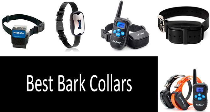 Best Bark Collars: photo
