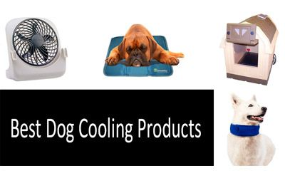 The Best Cooling Products Review of 2018 6d9f9f959