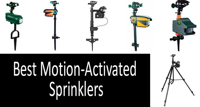 Best Motion-Activated Sprinklers: photo