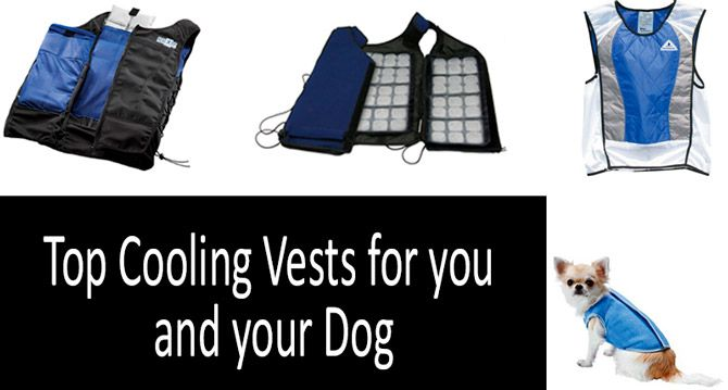 Top-9 cooling vests: photo