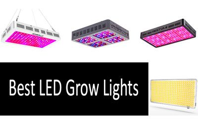 Best LED Grow Lights min: photo