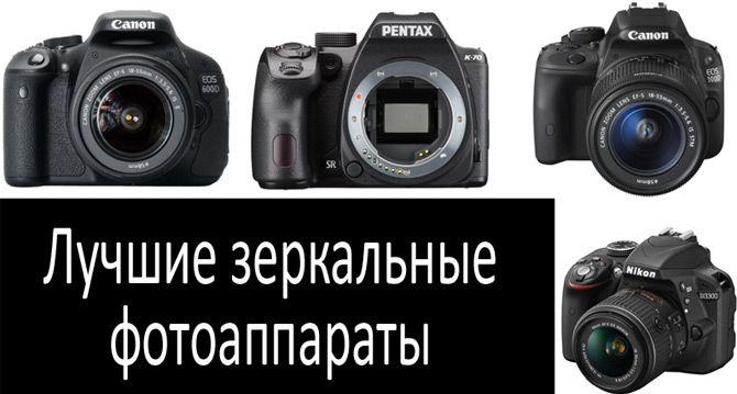 Лучшие зеркальные фотоаппараты: фото