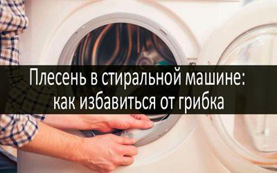 Плесень в стиральной машине min: фото
