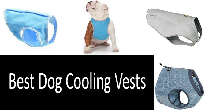 Best Dog Cooling Vests: photo