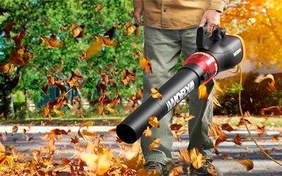 Best leaf vacuums min: photo