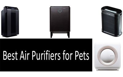 Best air purifiers for pets min: photo