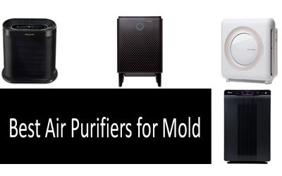 Best air purifiers for mold min: photo